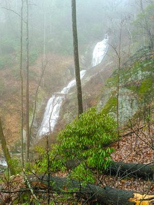 Toms Creek Falls From Higher View
