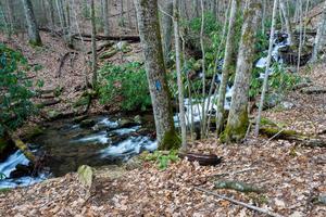Thompson Creek Trail Crossing