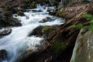 Tributary of Thompson Creek