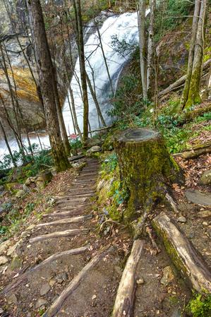 Switchback on the High Falls Trail
