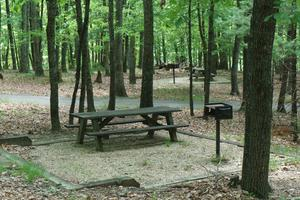 Stone Mountain Picnic Area
