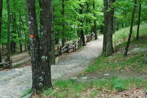 Stone Mountain Loop Trail Switchbacks
