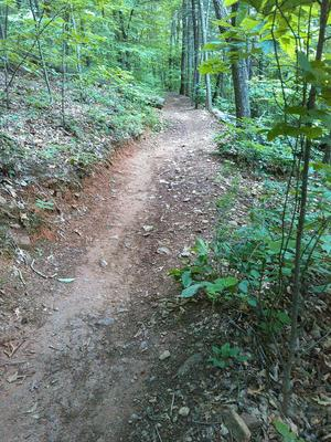 Ingles Field Gap Steep Section