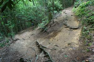 Upper Creek Falls Trail Switchback