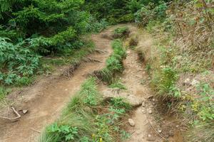 Eroded Art Loeb Trail
