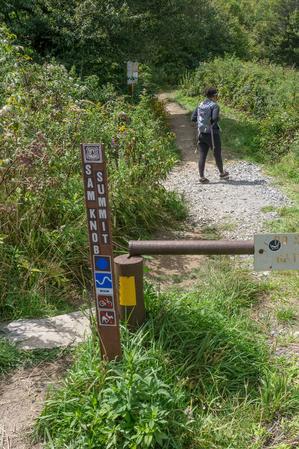 Sam Knob Summit Trail Start