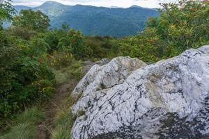 Quartz Outcrop on Sam Knob