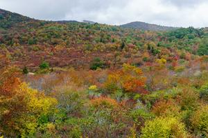 Graveyard Fields in Early Fall