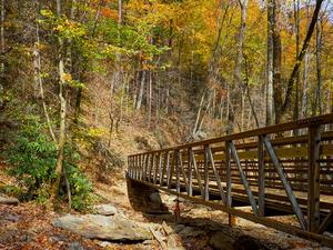 Chestnut Branch Bridge in Fall Color