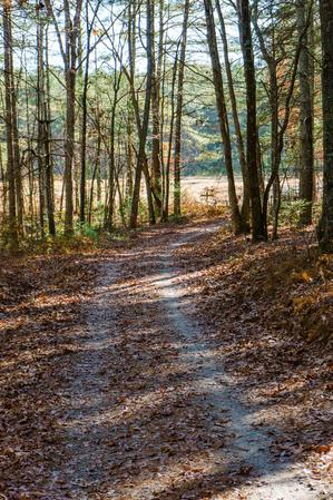 Hickory Mountain Road