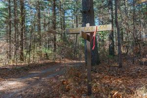 White Pine Loop and Hickory Mountain Road trail sign