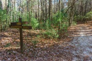 Rifle Trail and Boundary Trail Junction