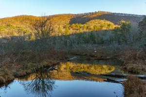 Bent Creek and Lake Powhatan from Homestead Loop