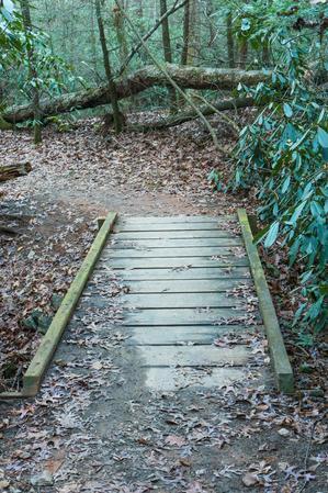 Small Creek Trail Bridge