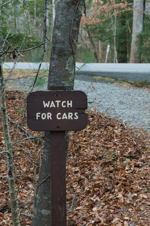 Exercise Trail Watch For Cars