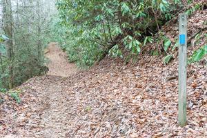 Start of Fletcher Creek Trail