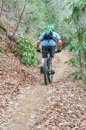 Rider on Fletcher Creek Trail