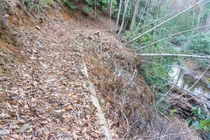 Spencer Branch Slide