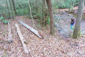 Spencer Branch Old Middle Fork Bridge