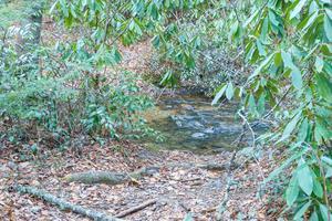 Spencer Branch Trail Ford