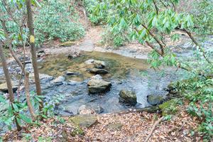 Spencer Branch Trail Crosses Fletcher Creek
