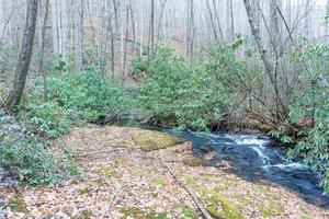 Fletcher Creek Cascade