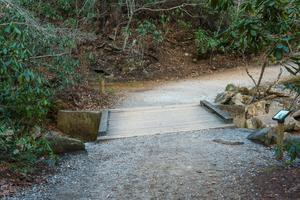 Trail Bridge over Shinny Creek