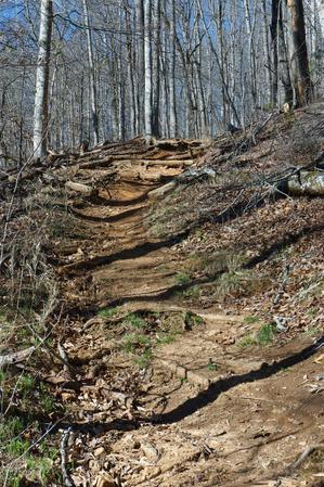 Steep Portion of Coontree Loop Trail