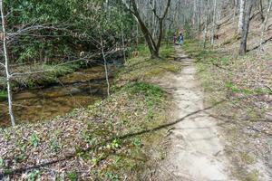 Coontree Loop Trail and Creek