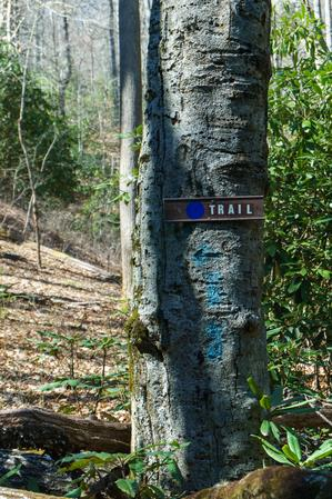 Blue Blaze and Sign on the Coontree Loop Trail