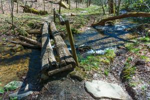 Log Bridge over Coontree Creek