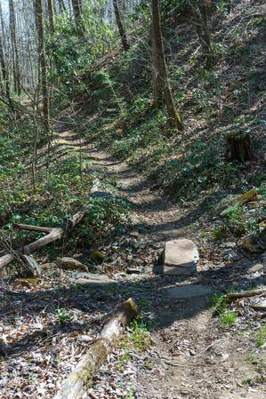 Stone as a Bridge on the Coontree Loop Trail