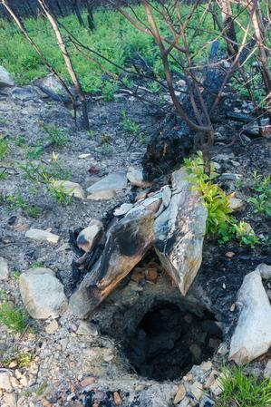 Fire Hole on Shortoff Mountain