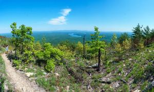 View from the Shortoff Mountain Trail