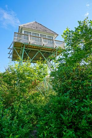 Green Knob Fire Tower