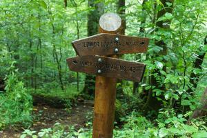 Signs for the Joyce Kilmer Loop Trail