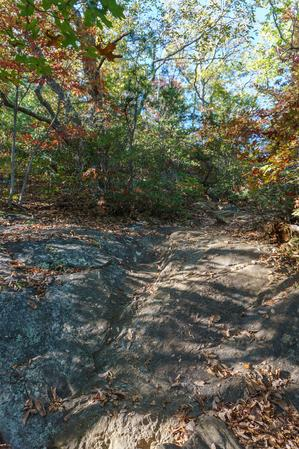 Rocky Section of Big Piney Ridge