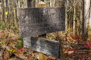 Big Fork Ridge and Caldwell Fork Junction Sign