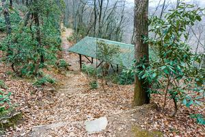 Shelter at the Buck Gap/Trestle Road Junction