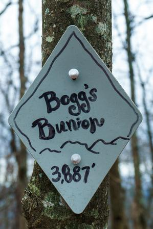 Bogg's Bunion Sign