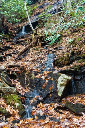 Small Cascade along the Old Trestle Road