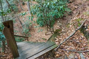 Steps and Ravine on the Old Trestle Road
