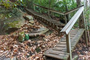 Steps on the Old Trestle Road