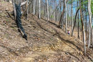 New Chestnut Knob Trail