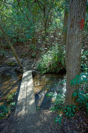 Daniel Ridge Loop Trail Bridge