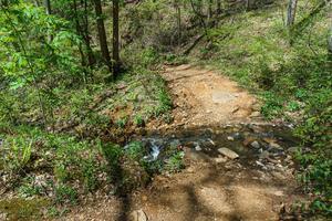 Creek Crossing on Daniel Ridge Loop
