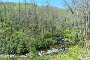 View from the Slide on Daniel Ridge Loop