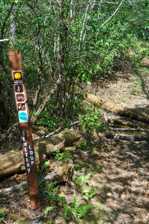 Cemetery Loop Trail at Long Branch