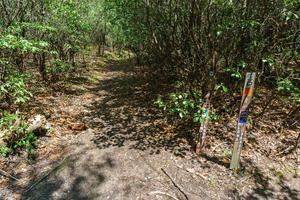 Long Branch/Cemetery Loop Junction