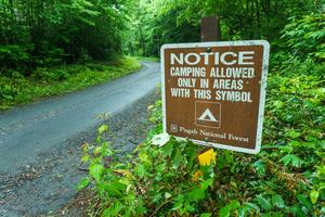 Camping in Designated Sites Only